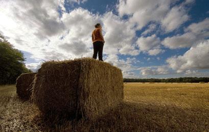 Agricoltura e sviluppo rurale